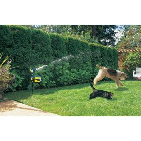 how to keep cats out of garden mulch